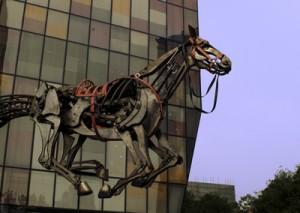 Cavall03_Quim_Farrero